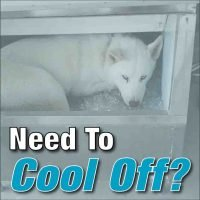 ac repair, ac service, air conditioning company, hvac, ac broken,