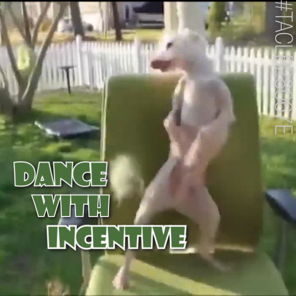 hvac incentives, new air conditioning, new air conditioner, dancing dog ac incentives